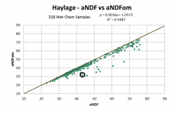 Scatter Plot aNDF vs aNDFom Haylage